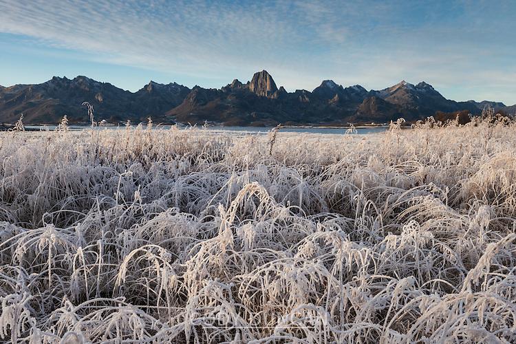 Reka mountain peak rising over frozen landscape, Vesterålen, Norway