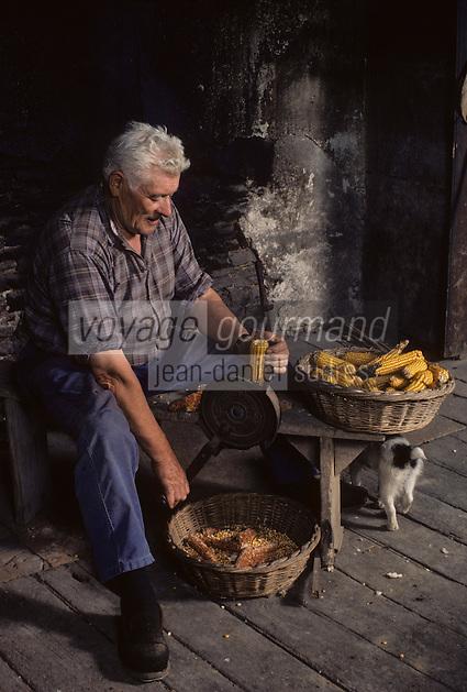 Europe/France/Midi-Pyrénées/46/Lot/Haut-Quercy/Salviac: Egrainage du maïs pour l'alimentation animale [Non destiné à un usage publicitaire - Not intended for an advertising use]<br /> PHOTO D'ARCHIVES // ARCHIVAL IMAGES<br /> FRANCE 1990