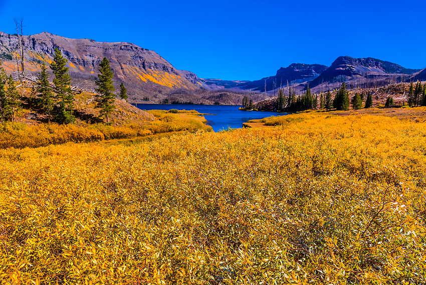 Trappers Lake in the Flat Tops Wilderness (between Yampa and Meeker), Colorado USA. In 2002  the Big Fish Fire burned 17,056 acres in and near the Flat Tops Wilderness Area, including the land ringing Trappers Lake.