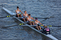 Crew: 404  WAR (B)  Warwick BC (O Joyce)  W 4+ Chall<br /> <br /> Fours Head of the River 2018<br /> <br /> To purchase this photo, or to see pricing information for Prints and Downloads, click the blue 'Add to Cart' button at the top-right of the page.