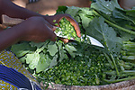 A woman cuts vegetables as part of a demonstration of nutritious foods in Kayeleka Banda, Malawi. The village's health program gets support from the Maternal, Newborn and Child Health program of the Livingstonia Synod of the Church of Central Africa Presbyterian.
