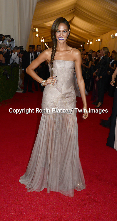 Joan Smalls attends the Costume Institute Benefit on May 5, 2014 at the Metropolitan Museum of Art in New York City, NY, USA. The gala celebrated the opening of Charles James: Beyond Fashion and the new Anna Wintour Costume Center.