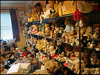 One woman lifetime collection of 600 bears.