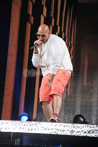 "BRONX, NY - JUNE 4: Fat Joe performs at JLO's coming home concert for State Farm Neighborhood Sessions at ""Orchard Beach"" June 4, 2014 Bronx, New York.Credit Walik Goshorn/MediaPunch"