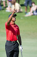 March 25, 2012: Tiger Woods tests the wind from the 8th fairway during final round golf action of the Arnold Palmer Invitational held at Arnold Palmer's Bay Hill Club & Lodge in Orlando, FL