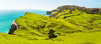 Coastal farmland near Wharariki Beach at Cape Farewell with Farewell Spit just visible in background near Collingwood, Nelson Region, South Island, New Zealand