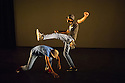 London, UK. 13.02.2014. Cindy Claes presents her Wild Card production of DANCEHALL TAKEOVER in the Lilian Baylis Studio, at Sadler's Wells. Picture shows: LIFE OF A SHADY with Conray Richards and Matthew Richards. Photograph © Jane Hobson.