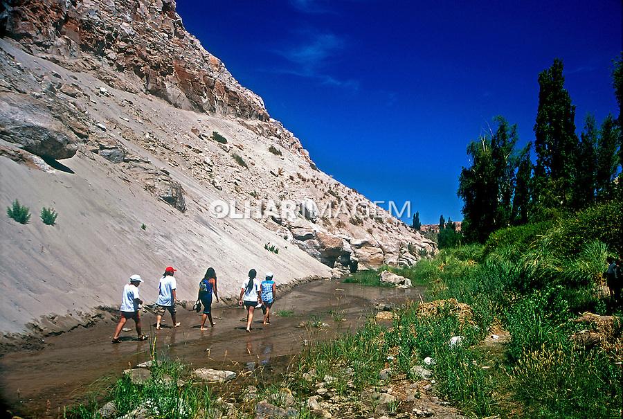 Oásis no Deserto do Atacama. Chile. 1998. Foto de Vinícius Romanini.