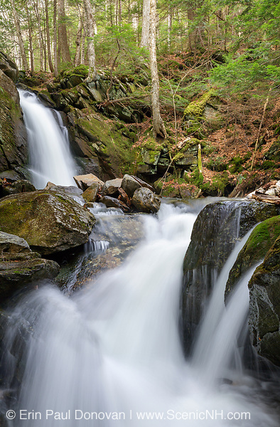 Blue Ravine Cascades, located along a tributary of the Wild Ammonoosuc River, on the side of Mt. Blue in Kinsman Notch of the White Mountains, New Hampshire USA during the spring months.