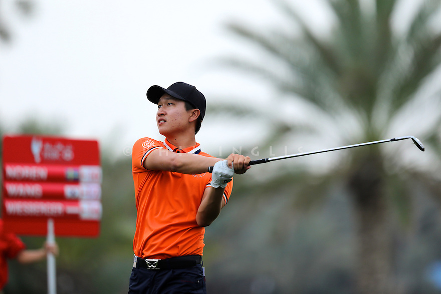 Jeunghun Wang (KOR) during the final round of the Abu Dhabi HSBC Golf Championship played at Abu Dhabi Golf Club 19-22 January 2017.(Picture Credit / Phil Inglis)