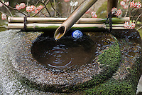 Water trickles through the bamboo spout of the 'tsukubai', a basin for ritual hand-washing, in the gardens of the Hosen-in temple