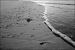 Robert Moses at Low Tide