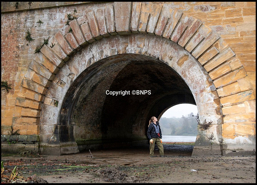 BNPS.co.uk (01202 558833)<br /> Pic: PhilYeomans/BNPS<br /> <br /> Rachel Brodie, Rural Manager for Blenheim, inspect's the newly revealed base of the bridge.<br /> <br /> An historic bridge that forms 'England's finest view' can be seen in all its glory for the first time in 250 years as engineers begin a mammoth project to save it.<br /> <br /> The world famous Vanburgh Bridge, that spans the two lakes at Blenheim Palace in Oxfordshire, is at risk of drying out and becoming unstable due to the alarmingly low water levels.<br /> <br /> Huge amounts of silt has built up in the lakes over decades, resulting in it being just 12ins deep in places.<br /> <br /> Now the 160 acre lakes have been drained for the first time since celebrated landscape gardener Capability Brown had them built in 1768.