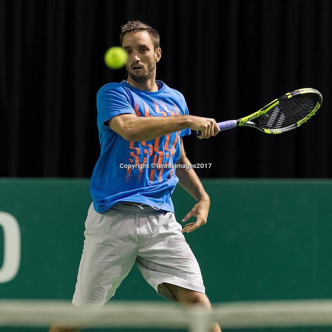 ABN AMRO World Tennis Tournament, Rotterdam, The Netherlands, 14 februari, 2017, Victor Troicki (SRB)<br /> Photo: Henk Koster