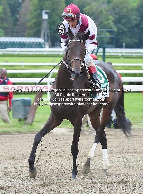 Crown Queen (no. 5), ridden by John Velazquez and trained by William Mott, wins the 31st running of the grade 2 Lake Placid Stakes for three year old fillies on August 16, 2014 at Saratoga Race Course in Saratoga Springs, New York.  (Bob Mayberger/Eclipse Sportswire)