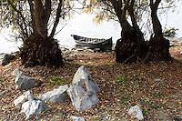 Romania: Danubio
