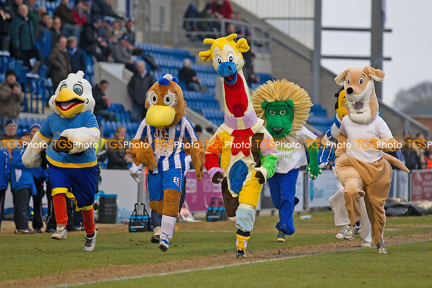 Not your average 100m dash as various mascots race at half time in aid of their fund raising efforts - Colchester United vs Preston North End - NPower League One Football at the Weston Homes Community Stadium - 09/02/13 - MANDATORY CREDIT: Ray Lawrence/TGSPHOTO - Self billing applies where appropriate - 0845 094 6026 - contact@tgsphoto.co.uk - NO UNPAID USE.