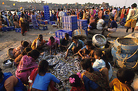 INDIA Mumbai Bombay, market women at fishing harbour/ INDIEN Mumbai, Marktfrauen im Fischereihafen