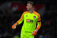 Artur Boruc of AFC Bournemouth during AFC Bournemouth vs Norwich City, Caraboa Cup Football at the Vitality Stadium on 30th October 2018