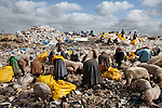 13 february 2013 - Dandora dumpsite, Nairobi, Kenya - People and pigs search through trash from Kenya airways at the Dandora dumpsite, one of the largest and most toxic in Africa. Located near slums in the east of the Kenyan capital Nairobi, the open dump site was created in 1975 and covers 30 acres. The site receives 2,000 tonnes of unfiltered garbage daily, including hazardous chemical and hospital wastes. It is a source of survival for many people living in the surrounding slums, however it also harms children and adults' health in the area and pollutes the Kenyan capital. Photo credit: Benedicte Desrus