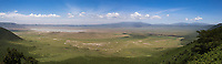 A stitched panorama of the famed Ngorongoro Crater.