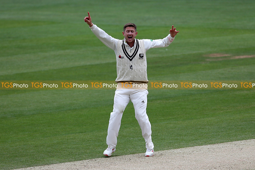 Joe Denly of Kent claims the wicket of Ryan ten Doeschate during Essex CCC vs Kent CCC, Specsavers County Championship Division 1 Cricket at The Cloudfm County Ground on 29th May 2019