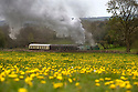 02/05/16 <br /> <br /> On a wet and windy Bank Holiday Monday steam engine 'Whiston' passes below a field of golden dandelions, running along the Foxfield Railway Line near Stoke in Staffordshire,<br /> <br /> The Hunslet Austerity 0-6-0 saddle tank was built by The Hunslet Engine Company of Leeds.<br />   <br /> It is one of 485 locomotives, the first one being completed on New Year&rsquo;s Day, January 1943 with the last built in 1964.<br /> <br /> The Foxfield Railway was built in 1892 to provide a link to the national railway network for the Foxfield Colliery, on the Stoke-Derby main line. <br /> <br /> All Rights Reserved: F Stop Press Ltd. +44(0)1335 418365   +44 (0)7765 242650 www.fstoppress.com