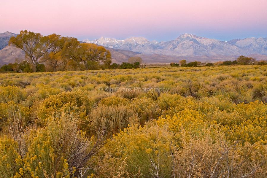 Owens Valley, Eastern Sierra California