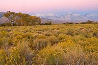 Owens Valley, California