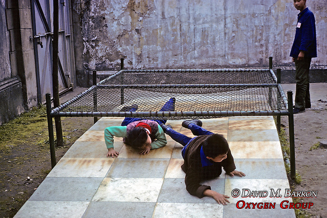 Kids On Obsticle Course