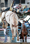 Tom McFarland, of Bowie, TX, competes in the bareback bronc riding event at the Reno Rodeo, in Reno, Nev. on Friday night, June 22, 2012. .Photo by Cathleen Allison