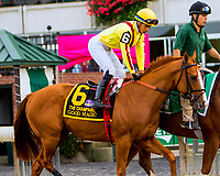 ELMONT, NEW YORK - OCT 7: Good Magic in post parade for the Champagne Stakes, at Belmont Park on October 6, 2017 in Elmont, New York. (Photo by Sue Kawczynski/Eclipse Sportswire/Getty Images)