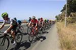The peloton including race leader Michal Kwiatkowski (POL) Team Sky in full flight after the start of Stage 4 of the La Vuelta 2018, running 162km from Velez-Malaga to Alfacar, Sierra de la Alfaguara, Andalucia, Spain. 28th August 2018.<br /> Picture: Eoin Clarke   Cyclefile<br /> <br /> <br /> All photos usage must carry mandatory copyright credit (&copy; Cyclefile   Eoin Clarke)