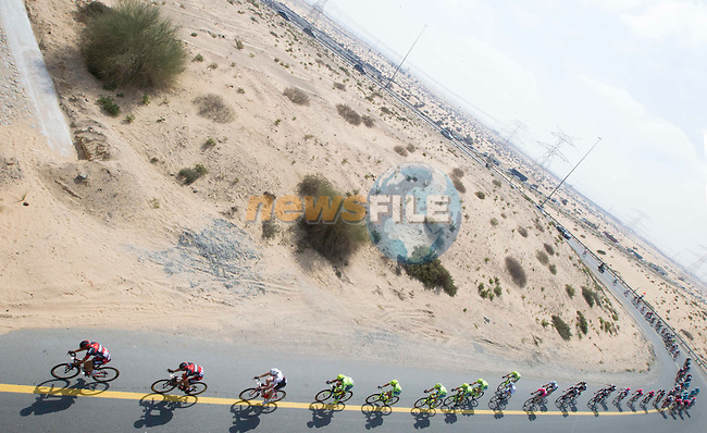 The peloton head away from Dubai City during Stage 1, the Dubai Silicon Oasis Stage, of the 2016 Dubai Tour starting at the Dubai International Marine Club and running 175km to Fujairah, Mina Seyahi, Dubai, United Arab Emirates. 3rd February 2016.<br /> Picture: ANSA/Claudio Peri | Newsfile<br /> <br /> <br /> All photos usage must carry mandatory copyright credit (&copy; Newsfile | ANSA/Claudio Peri)