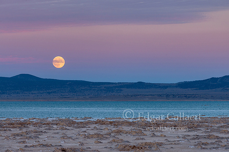 Moonrise, Mono Lake, Mono Basin National Forest Scenic Area, IEastern Sierra, Inyo National Forest, California