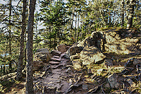 Hiking path through the woods, Acadia National Park, Mt, Desert Island, Maine, USA