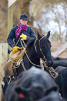 Wyoming cowgirl/rancher, Skye Clark Working cows, Afton Wyoming<br />