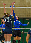 1 November 2015: Yeshiva University Maccabee Setter, Defensive Specialist, and team co-Captain Aliza Muller, a Senior from Los Angeles, CA, hits against the Saint Joseph College Bears at SUNY Old Westbury in Old Westbury, NY. The Bears shut out the Maccabees 3-0 in NCAA women's volleyball, Skyline Conference play. Mandatory Credit: Ed Wolfstein Photo *** RAW (NEF) Image File Available ***