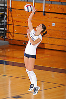 13 November 2010:  FIU's Andrea Lakovic (1) serves in the second set as the FIU Golden Panthers defeated the South Alabama Jaguars, 3-0 (25-12, 25-12, 25-20), at U.S Century Bank Arena in Miami, Florida.