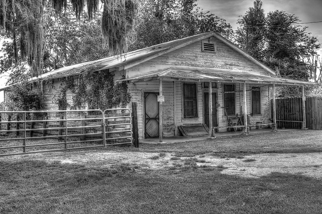 Homesteads c1850-1950 Micanopy, Florida