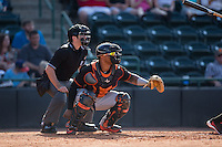 Delmarva Shorebirds catcher Yermin Mercedes (17) sets a target as home plate umpire Donnie Smith looks on during the game against the Hickory Crawdads at L.P. Frans Stadium on June 18, 2016 in Hickory, North Carolina.  The Crawdads defeated the Shorebirds 1-0 in game one of a double-header.  (Brian Westerholt/Four Seam Images)