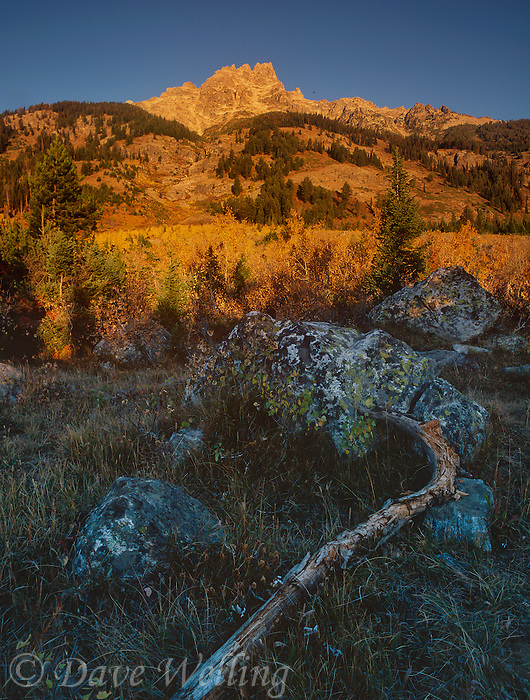 749450367 sunrise lights up the mountains and hilsides above lupine meadows on a fall day in grand tetons national park wyoming