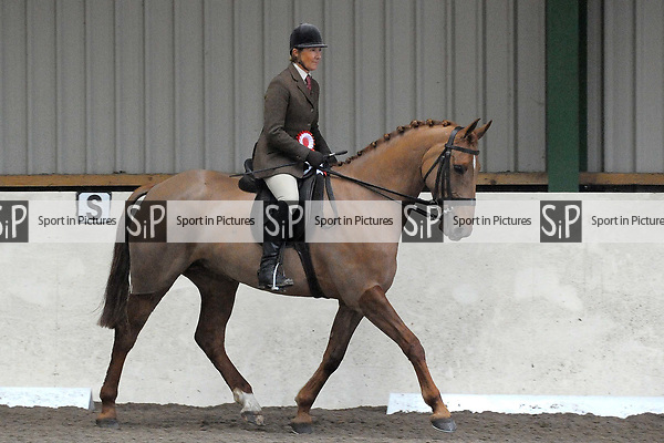 Classes 12 to 18. Unaffiliated Showing. Brook Farm training centre. Stapleford abbots. Essex. 11/03/2018. ~ MANDATORY CREDIT Garry Bowden/SIPPA - NO UNAUTHORISED USE - +44 7837 394578