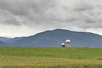 Farm silos appear over a corn field in Greene County, VA. Photo/Andrew Shurtleff