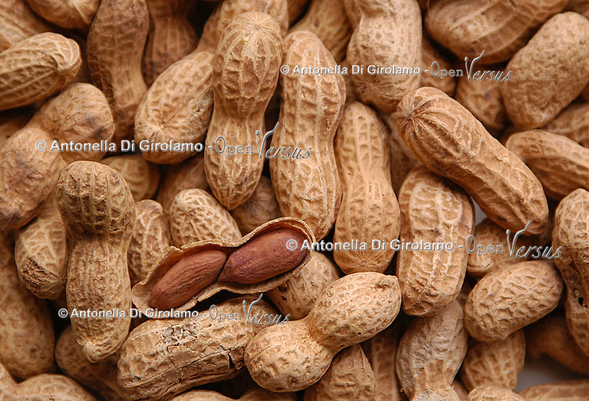 Semi di arachidi..Seed of peanut..  .