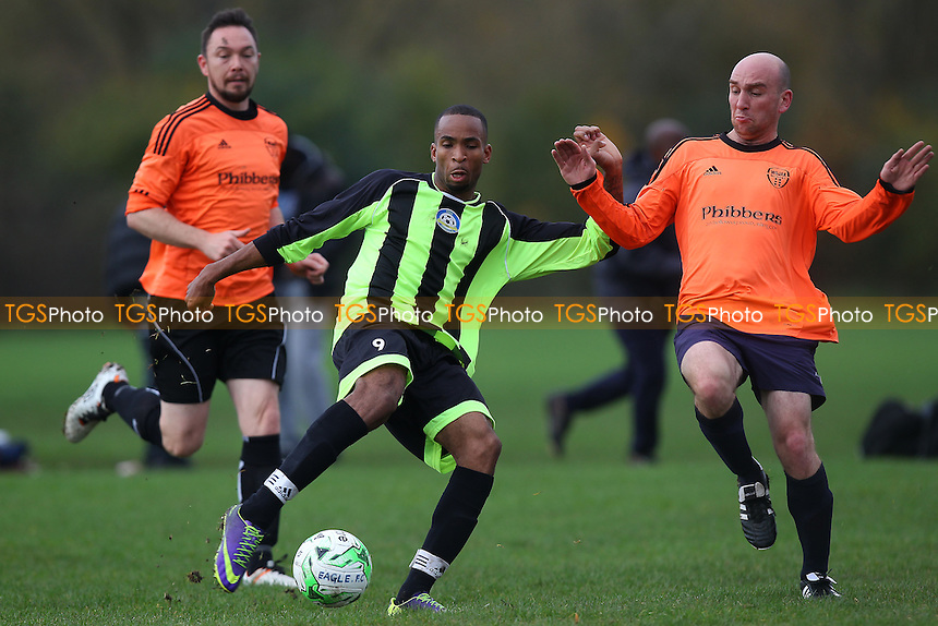 Eagle (green/black) vs Wojak Sunday - Hackney & Leyton Sunday League Jack Walpole Cup Football at Hackney Marshes, Hackney, England on 08/11/2015