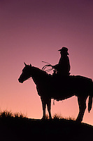 Cowboy with lasso and hat on a horse in a silhouette to the sunset afterglow,
