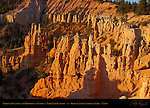 Fairyland Castle and Hoodoos at Sunrise, Fairyland Canyon, Bryce Canyon National Park, Utah