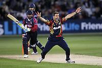 Cricket 2012-06