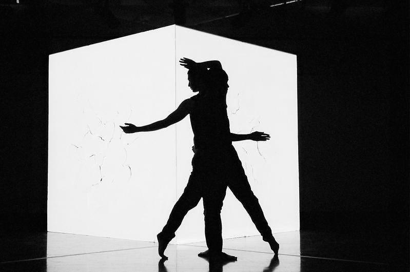 ¨REPLICA¨ or ¨Untitled Corner¨, per occasion | Jonah Bokaer & Judith Sanchez Ruiz | Washington, DC | 2009